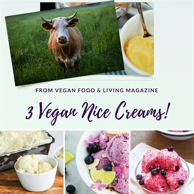 3 Vegan Nice Creams from Vegan Food & Living