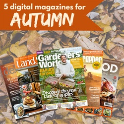 5 digital magazines for Autumn