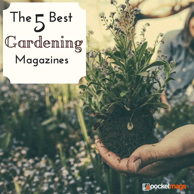 The 5 Best Gardening Magazines