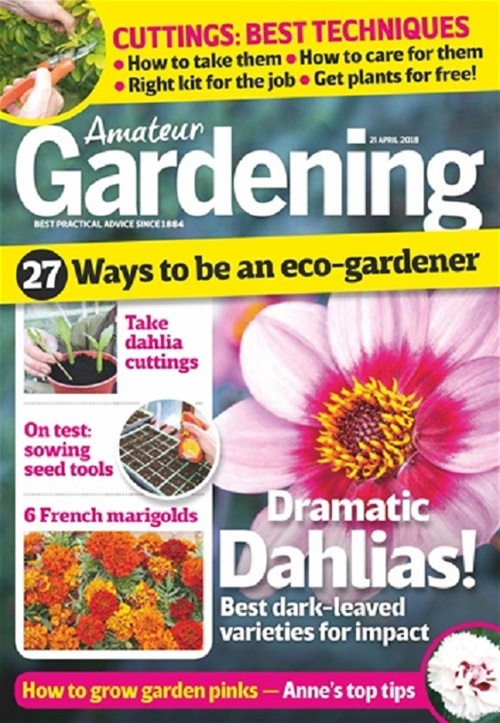 The 5 Best Gardening Magazines Pocketmags Discover