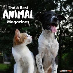 The 5 Best Animal Magazines