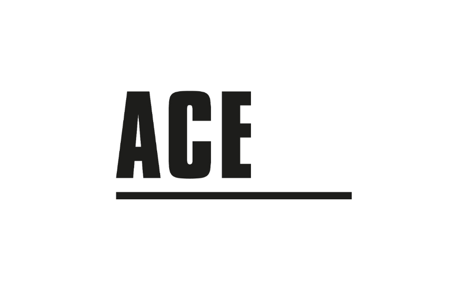 Jellyfish Connect mentors students in ACE training programme