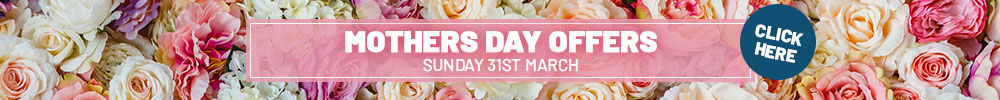 Mothers Day Offer
